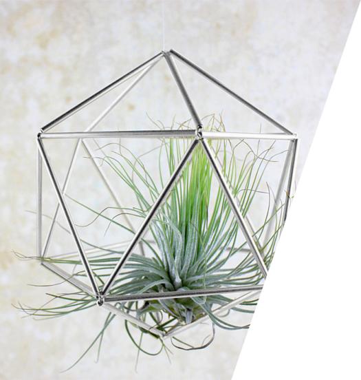 luft pflanzen klimaanlage und heizung zu hause. Black Bedroom Furniture Sets. Home Design Ideas