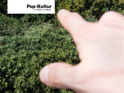 Pop, Pop, Popkultur!